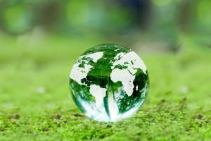 緑と地球儀の写真