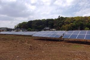 太陽光発電が設置されている土地の写真