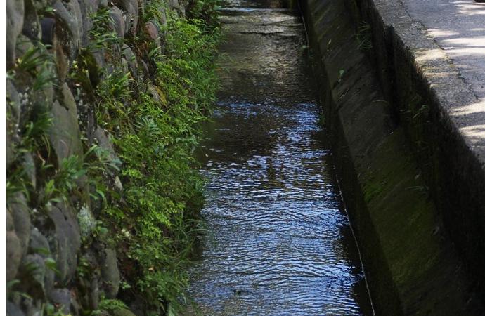 水路の写真