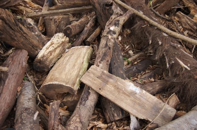 木質チップの写真