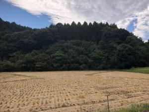 no.18102 佐賀県太陽光発電所