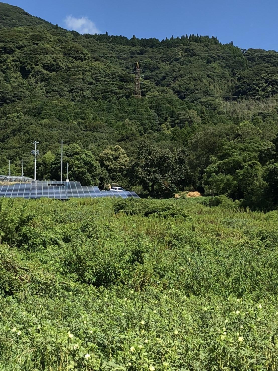 リンクス18049佐賀県太陽光発電所